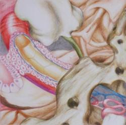 Microcosme #6, 2012, mine de plomb et crayons de couleur sur papier, 15 X 15 cm