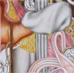 Microcosme #4, 2012, mine de plomb et crayons de couleur sur papier, 15 X 15 cm