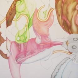 Appareil, grand#4, 2013, crayons de couleur sur papier, 96 X 96 cm
