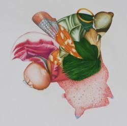 Ikebana #2, crayons de couleur sur papier, 40 X 40 cm