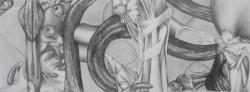 Microcosme, panoramique #5, 2013, graphite et crayon noir sur papier, 15 X 40 cm