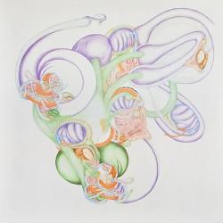 Appareil, grand #1, 2011, crayons de couleur et feutres sur papier, 100 X 100 cm